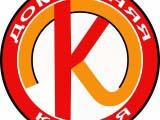 вариант логотипа компании