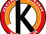 Разработанный логотип компании
