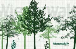 Графические материалы к проекту кафе Wienerwald