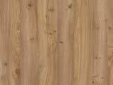 текстура акации дерева
