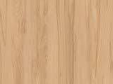 текстура дерева бук