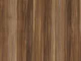 текстура дерева сливы