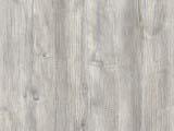 текстура дерева сосны