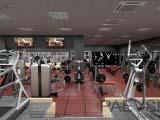 современные тренажеры для фитнес центров