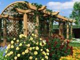 пергола для загородного домапергола для загородного дома