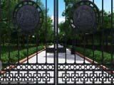 дизайн кованных ворот