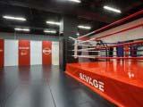 Зал бокса и единоборств фитнес клуба