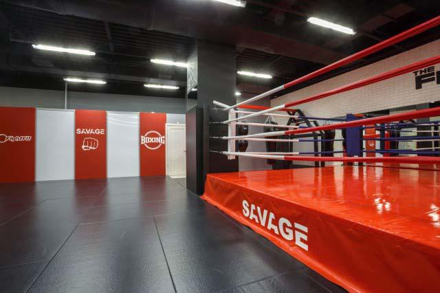 дизайн оформление зала бокса и единоборств
