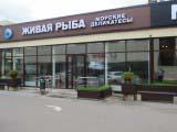 строительство магазинов для торгового центра