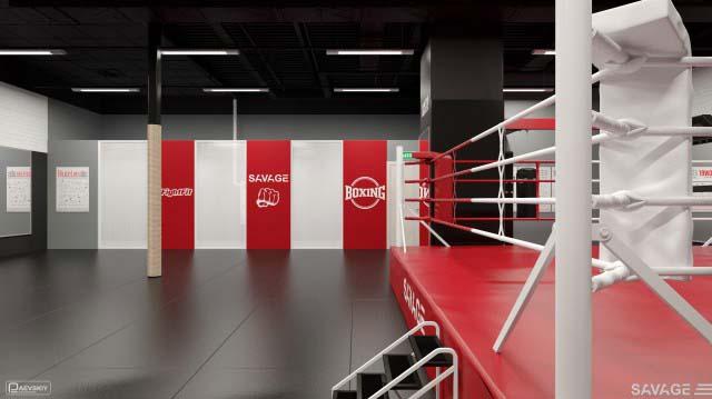 дизайн и проектирование функционального пространства зала единоборств фитнес клуба