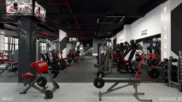 Проектирование пространства тренажерного зала фитнес клуба