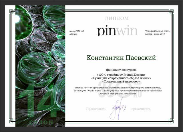 Константин паевский финалист конкурса pinwin